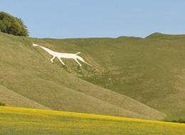 Cherhill White Horse