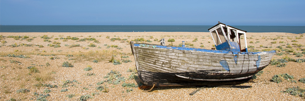 Dungeness Beach and Headland