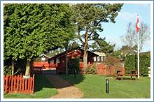 bellingham-campsite
