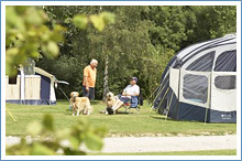 crowborough-campsite