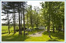 ravenglass-campsite