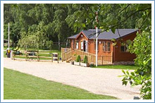thetford-forest-campsite