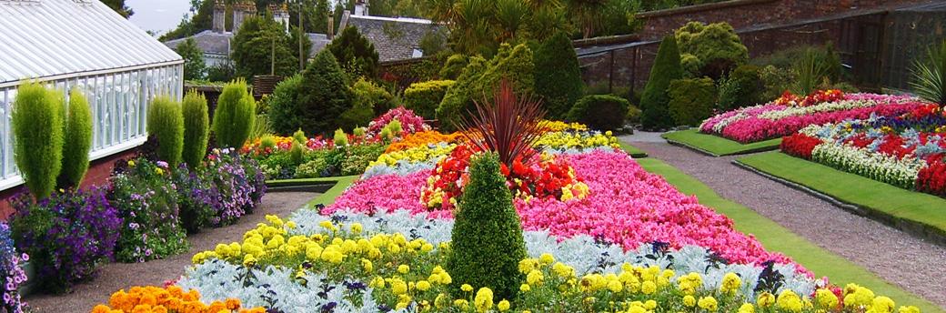 Ardencraig Gardens