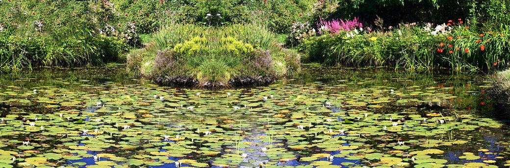 Ardwell House Gardens