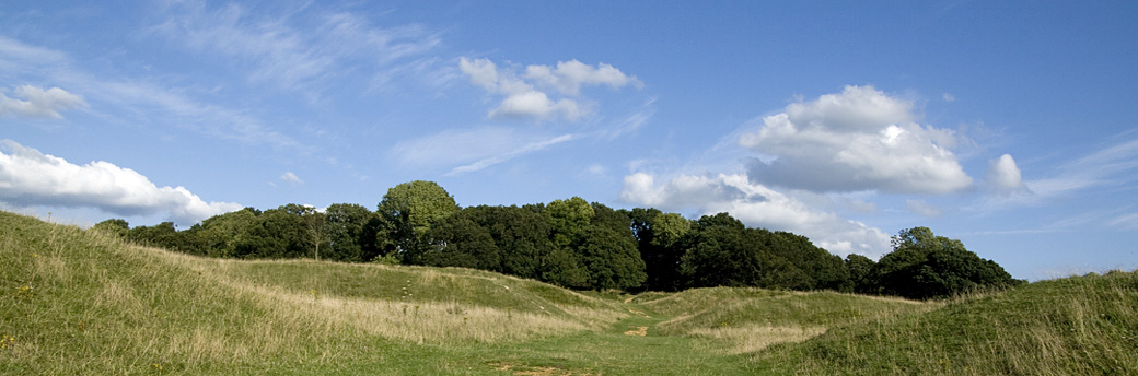 Badbury Rings Hill Fort