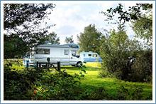 Aldridge Campsite