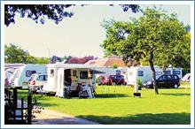 chichester-campsite