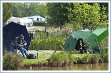 hereford-campsite