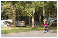 sandringham-campsite