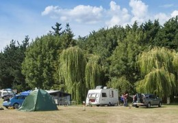 Thetford Forest Camping and Caravanning Club Site